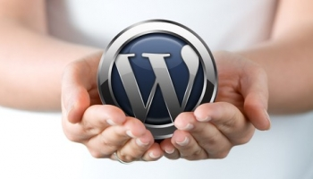 WordPress: Make A Professional Website With No Coding