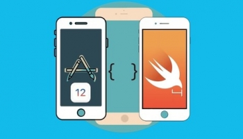 The Complete iOS Apps Developer Course (Project base)