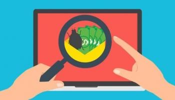 Bug Bounty Hunting or Web Application Pentesting for 2021
