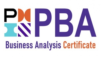 PMI-PBA Business Analyst Certification Practice Exam