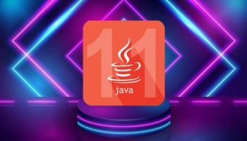 OCP Java® SE 11 Developer Exam 1Z0-819 Practice Tests